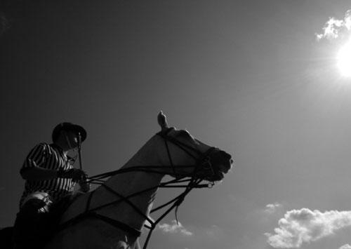 foto: Buksza Polo, mecz polo, koń, jeździec