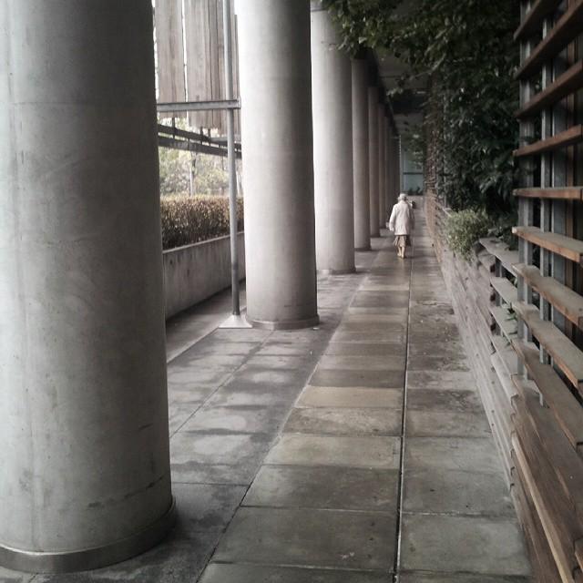 kolumny, budynek agory, agora, czerska, warszawa