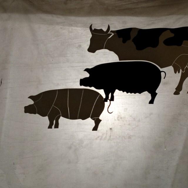 remont, świnia, krowa, sklep mięsny, międzyborska