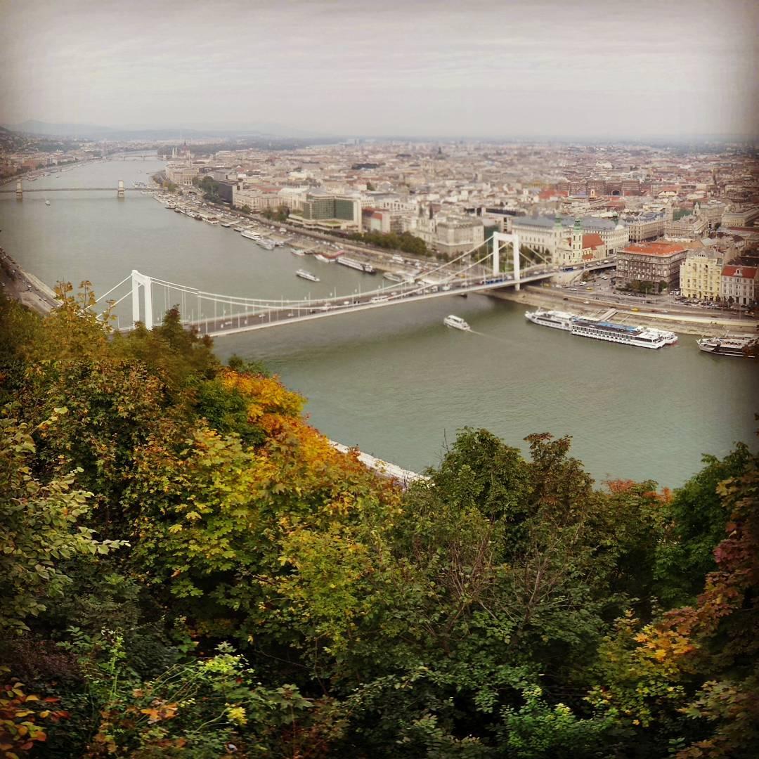 #buda #pest #budapest #budapeszt #dunaj #river #most #bridge #automn #jesień